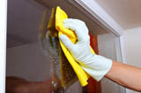 House Cleaning Services Kalamazoo - 1